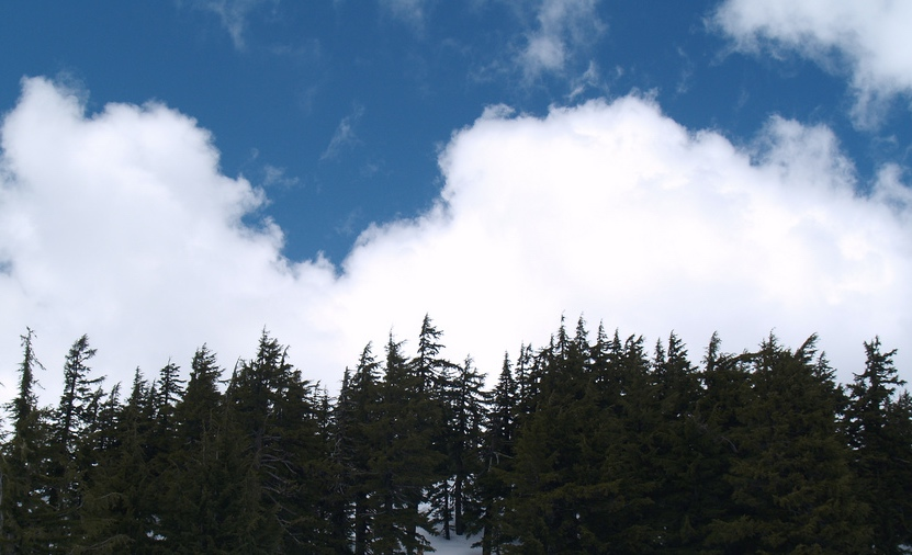 Brighter clouds can increase reflectivity